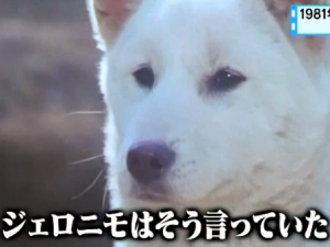 リュウ炎の犬