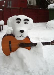 面白い雪犬