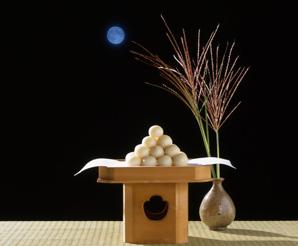 月見の画像 p1_1