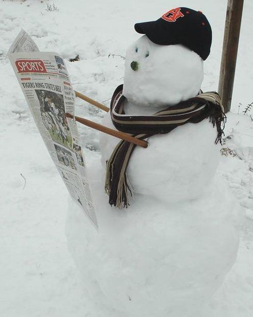 面白い雪だるまアイデア