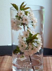 桜テーブルフラワー生け方