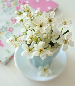 桜テーブルデコレーション