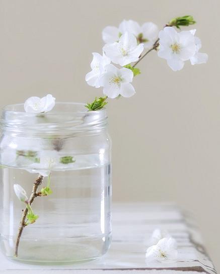 桜の簡単フラワーアレンジメント