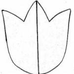 チューリップ花テンプレート無料